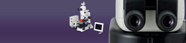 Nikon stereomicroscop